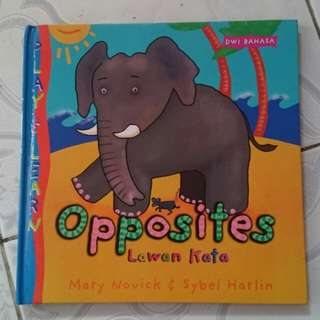 BoardBook about Opposites
