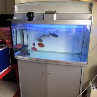 Aquarium Fish Tank with cabinet