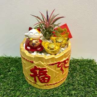 CNY 招财猫 Fortune cat In Gold pot 福 Airplant