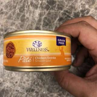 Wellness chicken entree pate catfood (pet food)