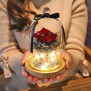 Preorder Valentine's Day/ Birthday Gift for HER - Plant Design 1