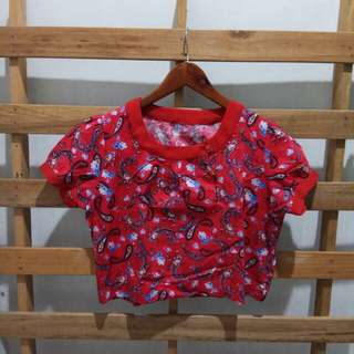 Red etnic blouse