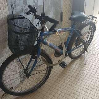 單車 原價800