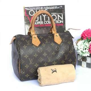 AUTH LOUIS VUITTON SPEEDY 25 HANDBAG