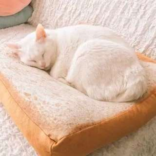 Bread Loaf Bed for pets