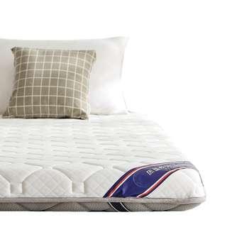 【🌨10cm 厚  💭有氧💭雙面四季雙人床褥 榻榻米 墊子 褥子 🌨】