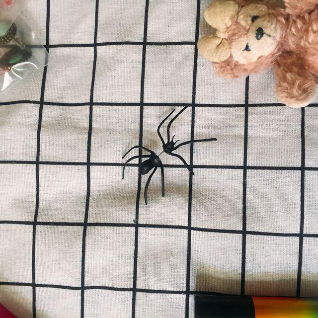 新蜘蛛耳環