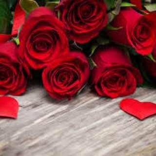 (PO) Valentine's day