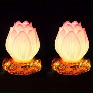 Lamp lotus light 1 pair led