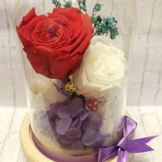 9折 Valentine Day 情人節 Love Day Gift Preserved Flower 保鮮花 hot red white Rose 浪漫 玫瑰 一雙一對  保存2-3年 Handmade