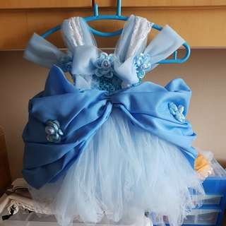 Cinderella handmade tutu dress