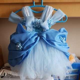 Cinderella handmade tutu dress