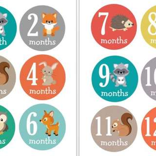 Cute Baby Milestone Stickers ( Cut your own)