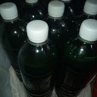 Joy Dishwashing Liquid Factory Price!!!!