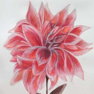 Watercolour painting Dahlia