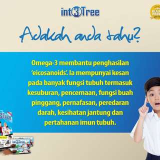 int3tree supplement terbaik