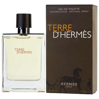 Hermes Terre D'Hermes EDT for Men (50ml/100ml/Tester) dHermes
