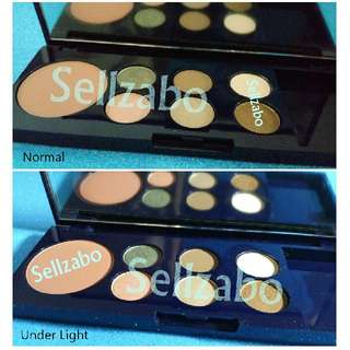 Used Estee Lauder Blusher Eyeshadow Colours Set Palette Eyes Shadows Makeup Sellzabo
