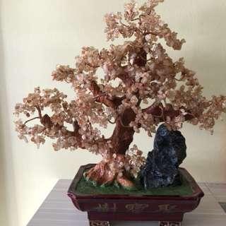 发财聚宝树