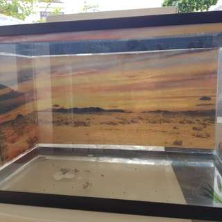 Reptile fish tank with mesh cover