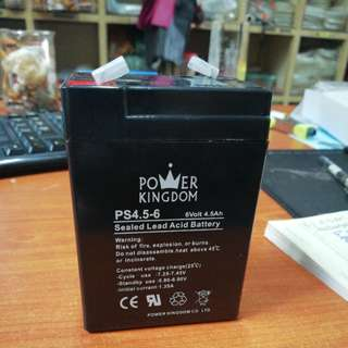 Power Kingdom 6volt 4.5AH Rechargeable Battery
