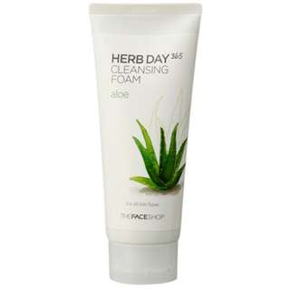Herb Day 365 Cleansing Foam (170mL)