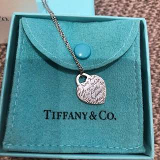 Tiffany & Co necklace (authentic)