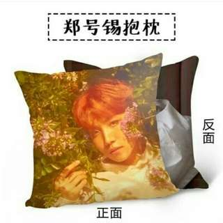 BTS Love Yourself Pillow