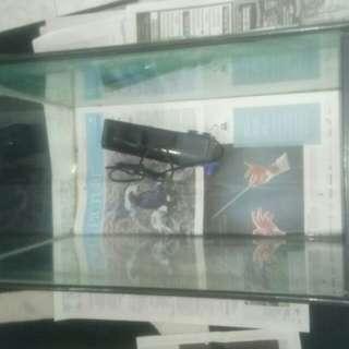Free 2ft fish tank