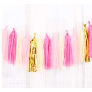 Party Tassel / Tinsel / Streamers -  Blue  /  Pink