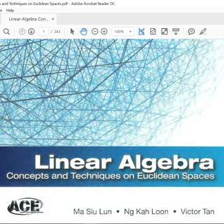 Linear Algebra: Concepts and Techniques on Euclidean Spaces - eBook