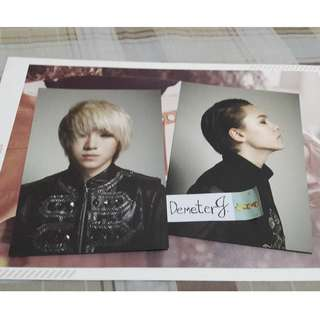 Seventeen 1st Mini Album Black Photocard/Postcard (Woozi and Vernon)