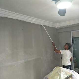 Painting/Plastering