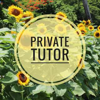 Private Tutor (Math/Science, Elementary/HS)