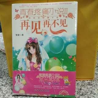 Brand new not open chinese story book 青春疼痛小说2 再见再不见