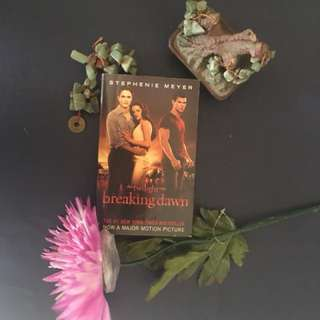 Stephenie Meyer's Breaking Dawn