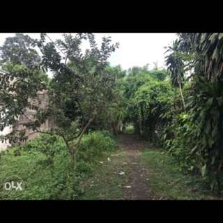 2,600 sqm Lot for sale in San Pablo