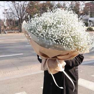 Giant Baby Breath Bouquet