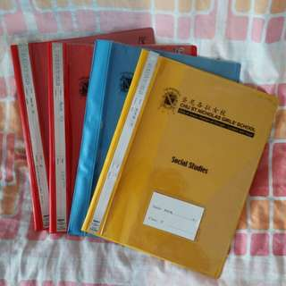 CHIJ SNGS primary files