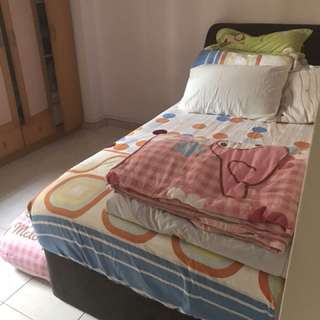 Pull out bed (Used by 7yo kids. Still in good condition)