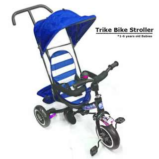 Kids Trike Bike Stroller