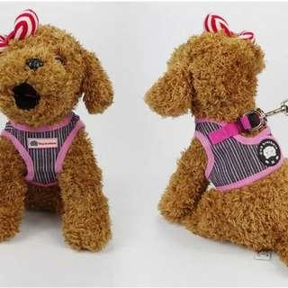 *RESTOCK* Cat / Dog Harness Leash size M-XL