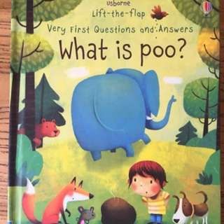 🚚 Usborne Lift-the-Flap what is poo?