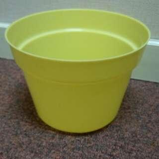 Pot bunga warna