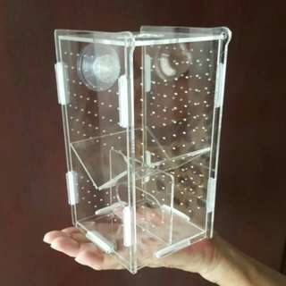 Acrylic Breeding Box For Guppy Molly Fish