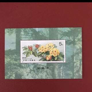 China stamp 1991 T162 Miniature Sheet
