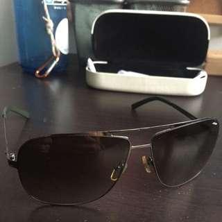 Sting Sunglasses