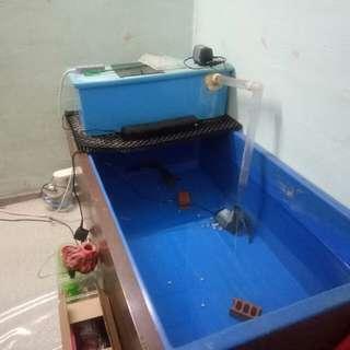 Fish Tank (FGT 5x2.5x2.5) no panels
