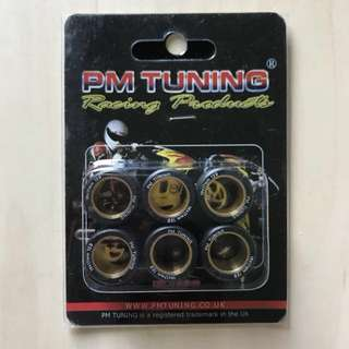 12g PM TUNNING VARIATOR ROLLERS