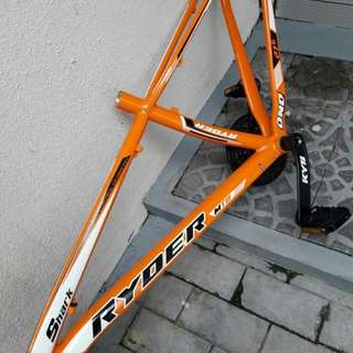 Mountain bike frame w/crank